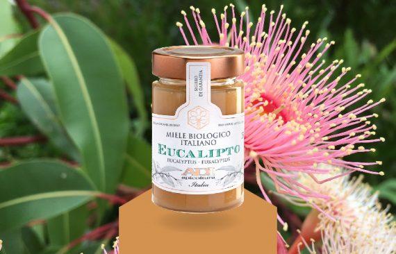 cover miele eucalipto